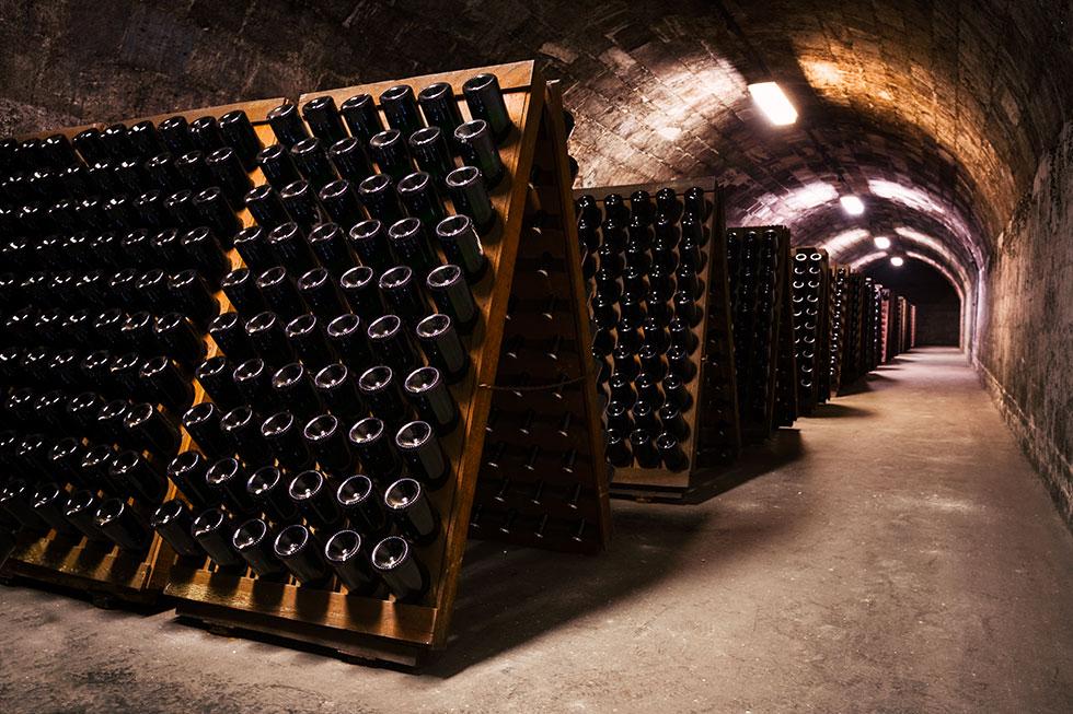 visite de domaine en Champagne
